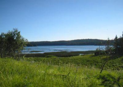 Peaceful surroundings at Roche Lake Resort